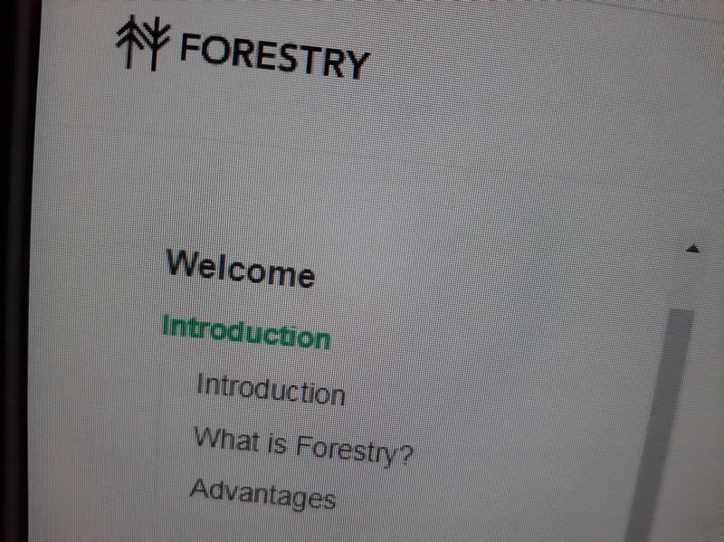 Anem a fer proves amb el CMS Forestry